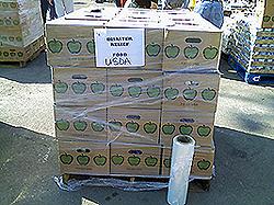 image of food bank boxes