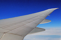 image of airplane wing
