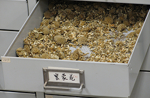 Chinese herbs drawer open