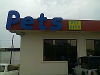 Pet City, the store from which the bulldogs were stolen