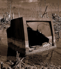 tv dumped in swamp