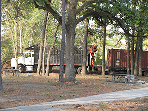 dead tree removal trucks to haul away