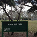 Patrons of one of Houston's oldest parks were shocked to discover earlier this week that about an acre of trees and vegetation had been clear-cut out of the park. The area that was destroyed is directly behind a new development of townhouses.