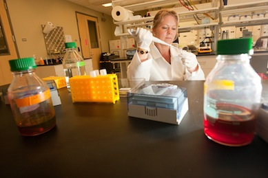Cecilia Williams in her lab (Photo courtesy of the Daily Cougar)