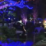Video: Shining Light On The Houston Zoo